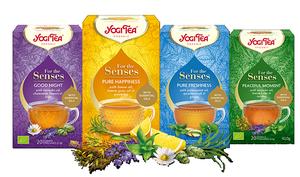 Yogi Tea For the Senses