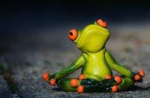 Meditatie-benodigdheden