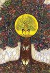 Namaste inzichtkaarten van Toni Carmine Salerno