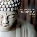 Mindfulness - Het hart ziet vaak helderder dan het verstand...