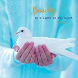 Mindpointer - Beauty is a light in the heart....