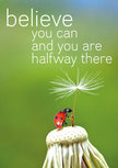 Postcard - Believe you can and you are halfway there