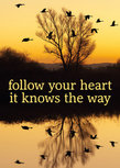 Postcard - Follow your heart it knows the way