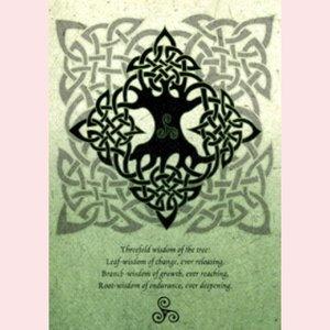 Amber Lotus Celtic Elemental Tree