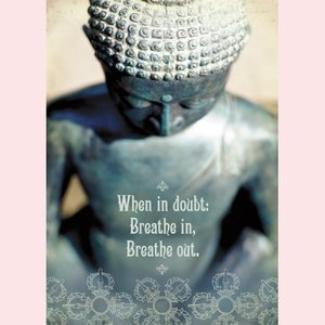 Amber Lotus: breathe in breathe out