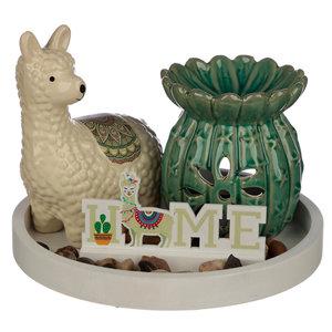 Waxmeltbrander cactus lamaset