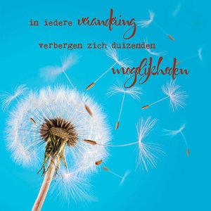 Mindpointer - In iedere verandering......