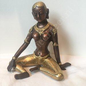 Parvati tweekleurig 15 cm