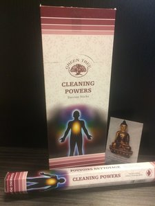 Cleaning Powers wierook - hexagram