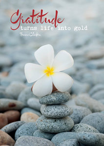 Postcard - gratitude ....