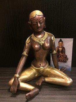 Parvati tweekleurig  15cm
