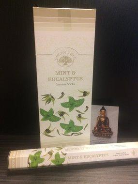 Mint & Eucalyptus - hexagram